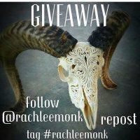 #rachleemonk @rachleemonk